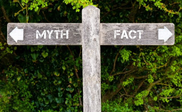 wooden sigh, myth vs fact