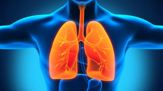 Nanotechnology Can Be Harmful to the Lungs