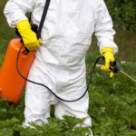 spraying pesticide