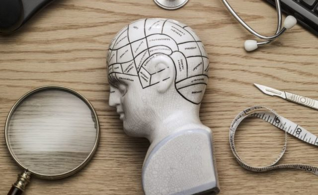 A phrenology head on a doctor's desk