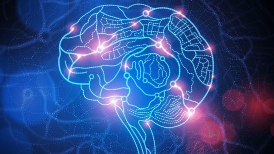UCSF Launches Groundbreaking Online Registry to Drive Brain Disease Research