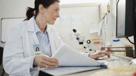 Female physician using a healthcare database