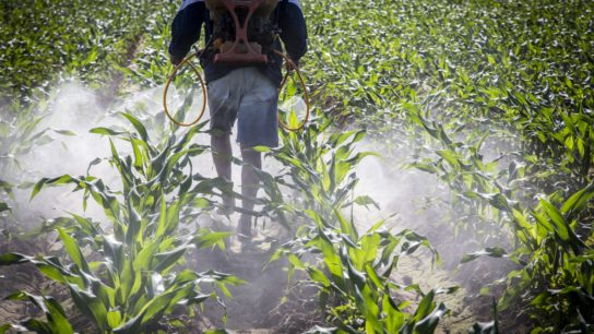 Pesticide use has been shown to affect cardiovascular health outcomes.