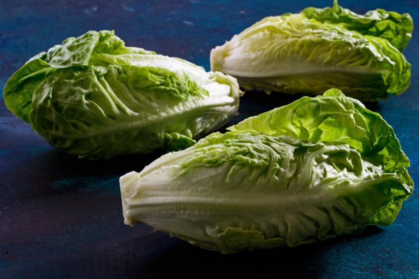Three heads of romaine lettuce.