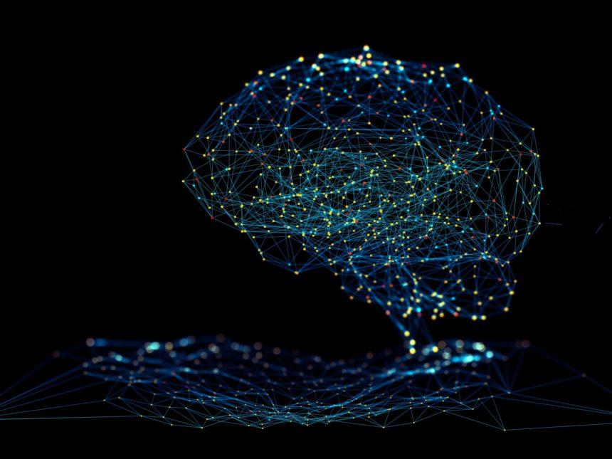 Computer generated brain model