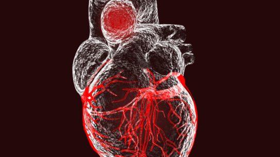 A transparent diagram of a heart with the aortic valve highlighted.